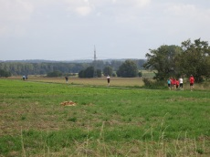 ... über die Felder
