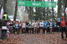 der Start zum 10 km-Lauf