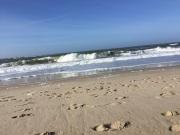 auch gab es schöne Wellen